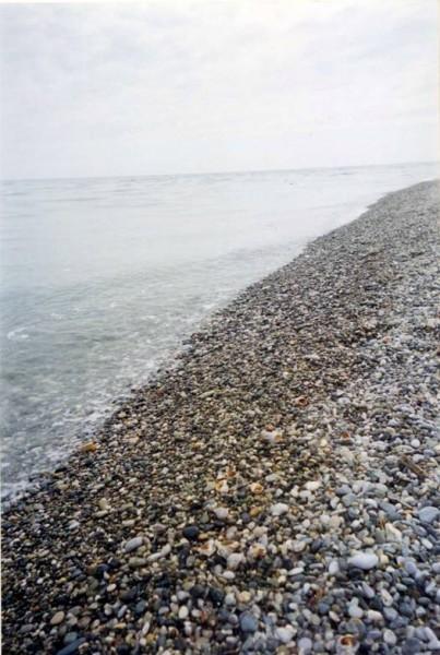 Море. Пицунда